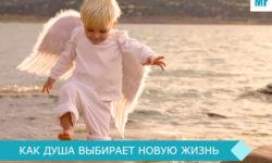 как душа выбирает новую жизнь